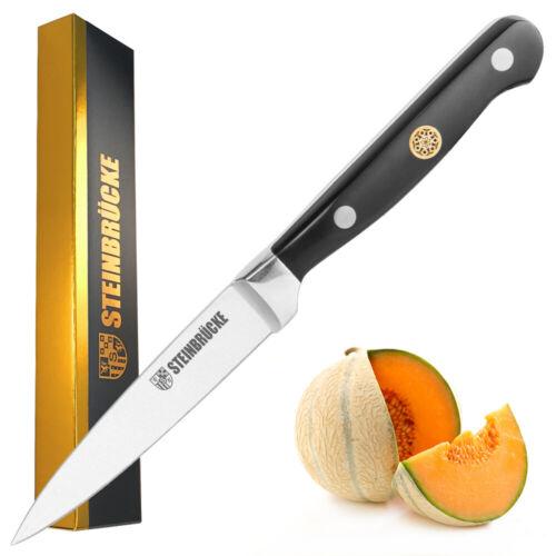 Paring Knife 4 Inch Kitchen Knife German Steel Fruit Knife for Peeling Slicing