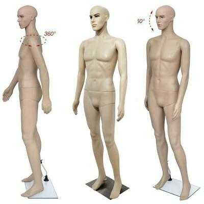 Male Mannequin Full Body Realistic Shop Display Head Turns Form W Base Us