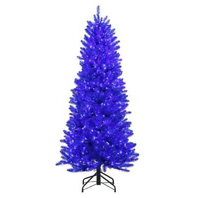 6' SHINY BLUE FRASER PRE-LIT TREE w/450 MICRO-STYLE WARM WHITE & BLUE LED LIGHTS