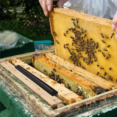10pcs Black Small Bee Hive Beetle Blaster Beehive Beetle Trap Beekeeping Tools
