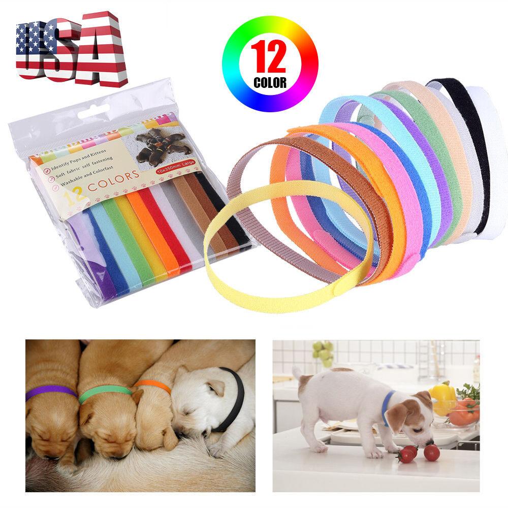 12pc/Set Puppy Pet Dog Whelping ID Collar Litter Kitten Cat Identification Bands
