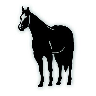 H QUARTER HORSE decal for your tack box farm ranch truck or trailer BLACK Tack Your Horse