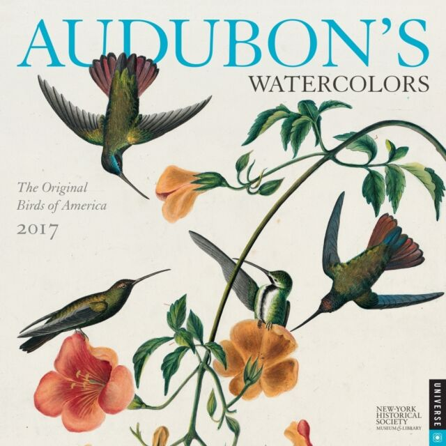 Audubon's Watercolours 2017 Square Wall Calendar NEW by Andrews McMeel