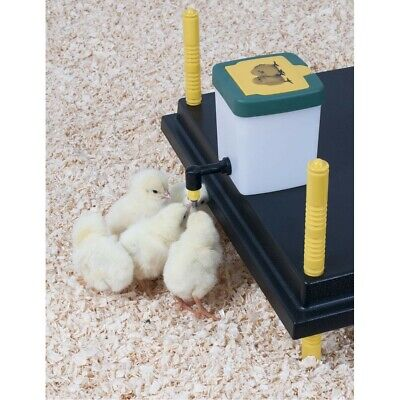 0.5 L Nipple Drinker - Chicken/Quail/Pigeon/Chick/Rabbit Drinker plus bracket