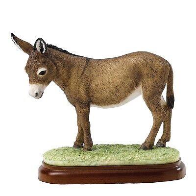 Border Fine Arts Studio - Mammals - Donkey (Brown) A24895