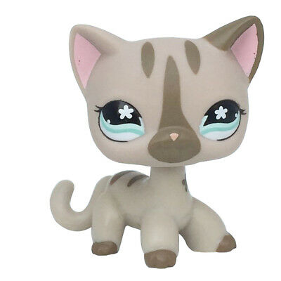 Littlest Pet Shop LPS #468 Loose Toys Grey Short Hair Kitten Cat Animals Figure