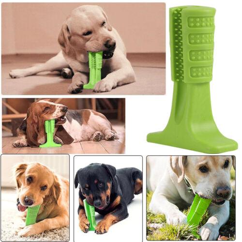 Hunde Zahnpflege Stick Kauen ZahnBürste Spielzeug Zahnreinigung Kauspielzeug Pet