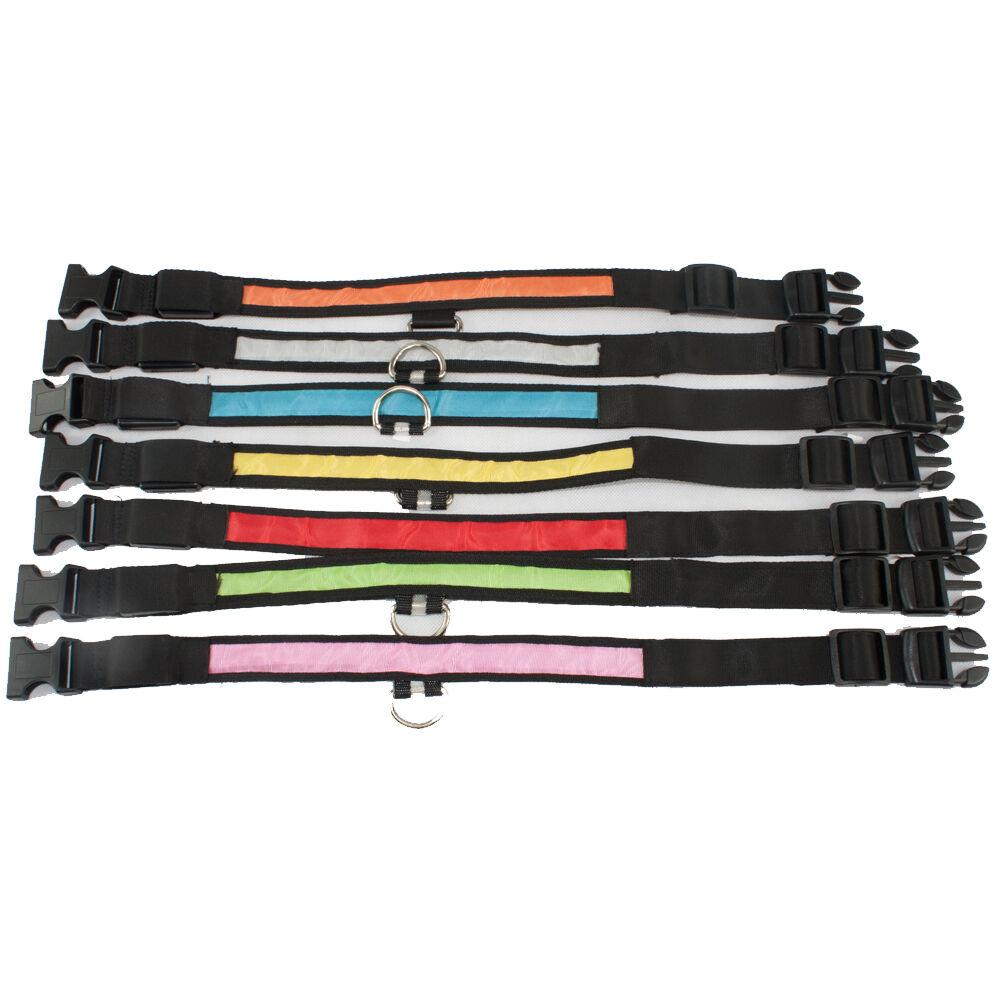 Hundehalsband LED, Halsband für Hunde, Sicherheit für den Hund, leuchtend,