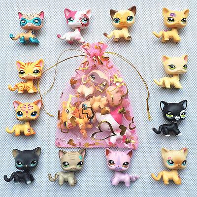 5pcs lot Random LPS Short Hair Cat Littlest Pet Shop rare kitty Surprise gift