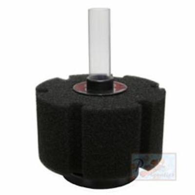 ISTA Bio Sponge L size - Round Bio Foam Round Sponge Filter