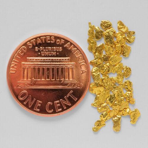 0.7898 Gram Alaska Natural Gold Nuggets --- 53667-14 - Alaskan Gold Nuggets - $0.01