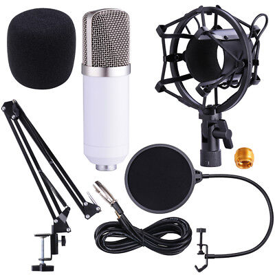 Condenser Microphone Shock Mount Arm Stand Pop Filter For Re