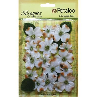 Petaloo Botanica - Vintage White Velvet Fabric Dogwood Flowers- 24 per pkg