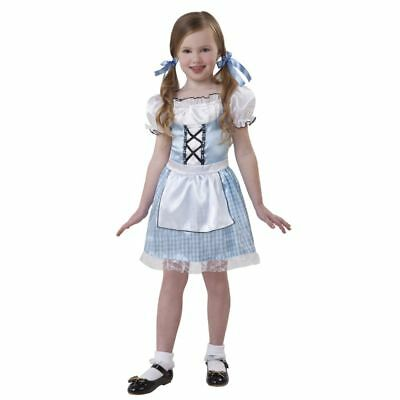 Dorothy Costume for Girls size Large Wizard of Oz Halloween Character Dress NWT