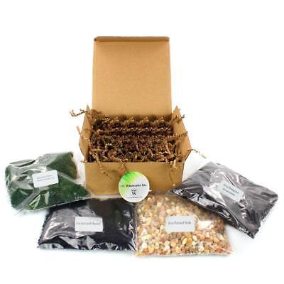 Diy Terrarium Complete Kit