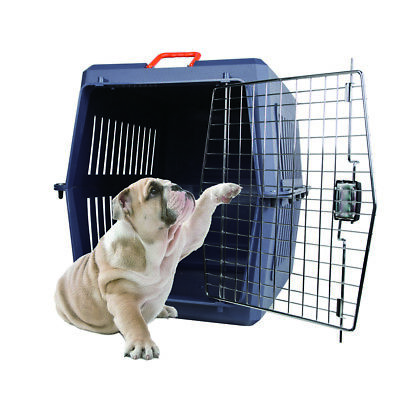 Cat Dog Crate Carrier Plastic Chrome Door Pet Safe Travel Carrier Crates Box