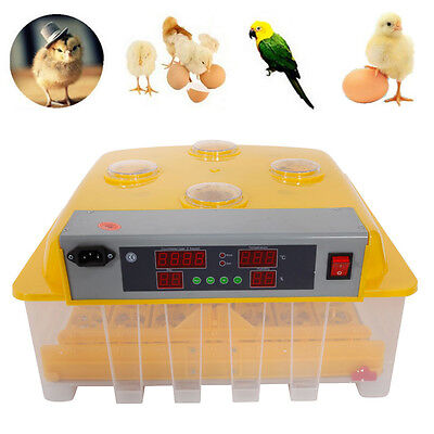 48-egg Temperature Control Practical Peep Hole Fully Automatic Poultry Incubator