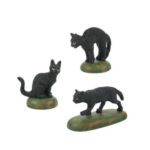 Dept. 56 Halloween A Clowder of Black Cats - 6007711