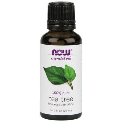 Now Foods Tea Tree Oil 100  Pure   Natural   1 Oz