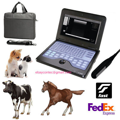 Veterinary Ultrasound Scanner Animal Laptop Machineendorectal Probe Equinecow