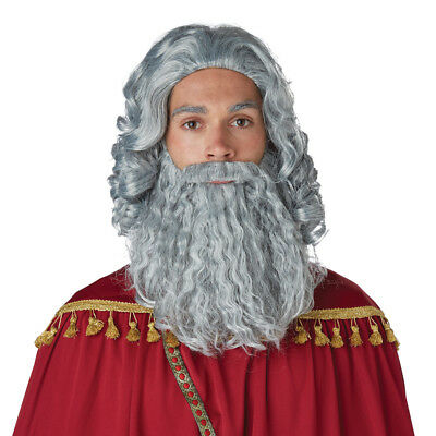 Mens Biblical King Grey Wig and - Grey Beard And Wig