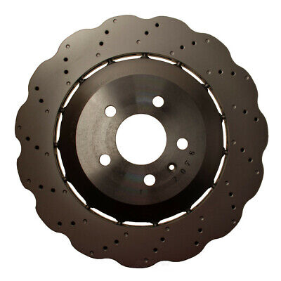 Disc Brake Rotor-OE Supplier Rear WD Express 405 54130 066