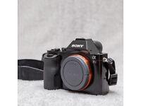 Sony Alpha A7R (MARK 1) 36.4 MP Full frame body (50k clicks)