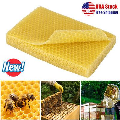 10x Honeycomb Foundation Bee Hive Wax Frames Beekeeping Equipment Sheet Tool
