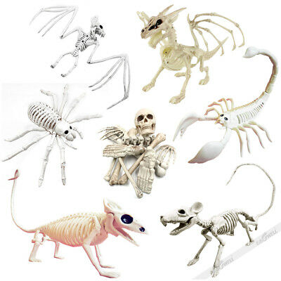 Halloween Skeleton Lizard Scorpion Bat Rat Dragon Human Bonez Props Decorations