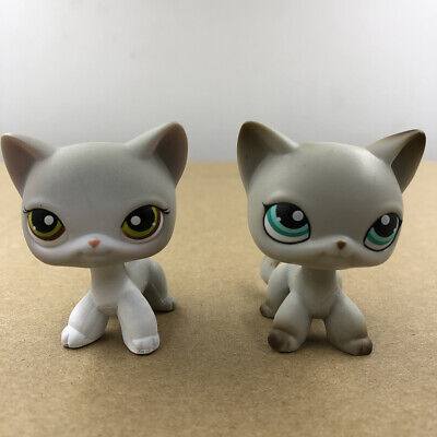 Shop For Kid (Littlest Pet Shop LPS #391 #138 Shorthair Cat Kitty Doll Collection Gift For)
