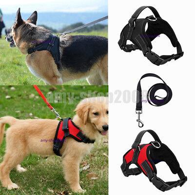 Collars Harnesses Leashes (Large Dog Leash Harness Adjustable Pet Safe Control Training Walking)