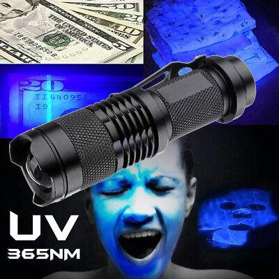 High Powered UV Lamp Black Light Ultra Violet Flashlight 395nm 5W LED (Black High Powered Led)