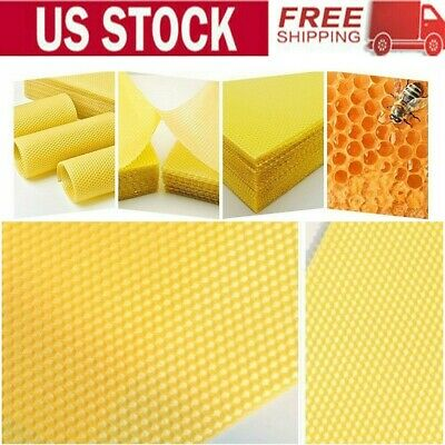 10pcs Yellow Honeycomb Foundation Bee Hive Wax Frames Beekeeping Equipment Us