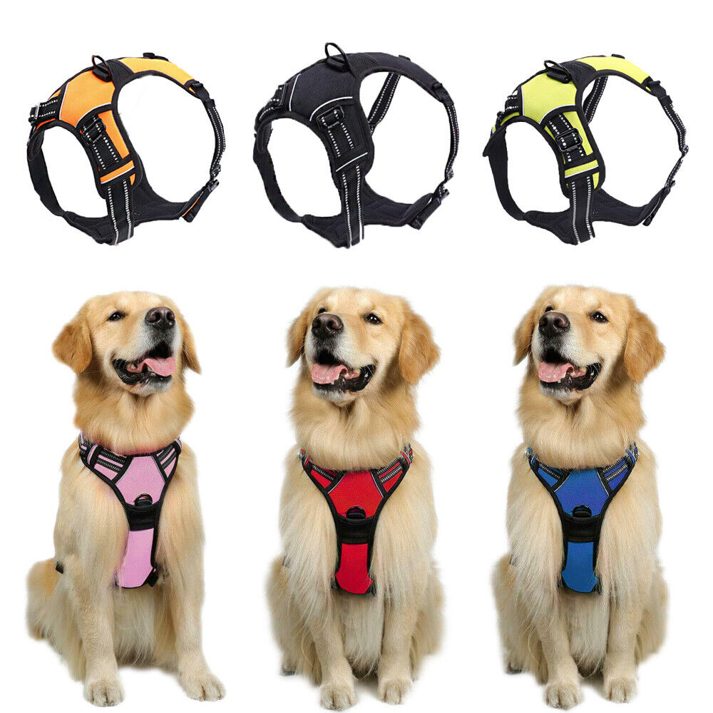 Puppia Original Soft Mesh Harness for Dogs Blue ~ Authentic Local Seller