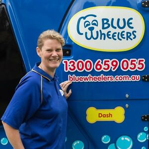 Mobile Dog wash & Grooming business for sale Ringwood North Maroondah Area Preview