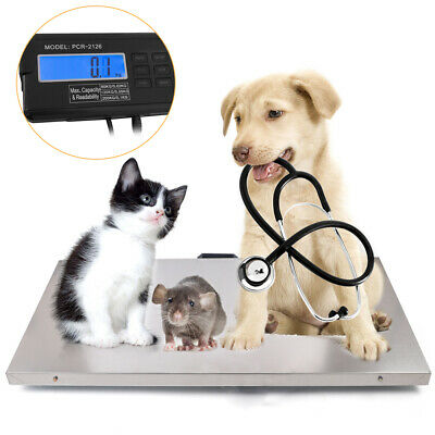 440lbs Digital Livestock Scale Large Pet Vet Scale 110x53cm Stainless Steel