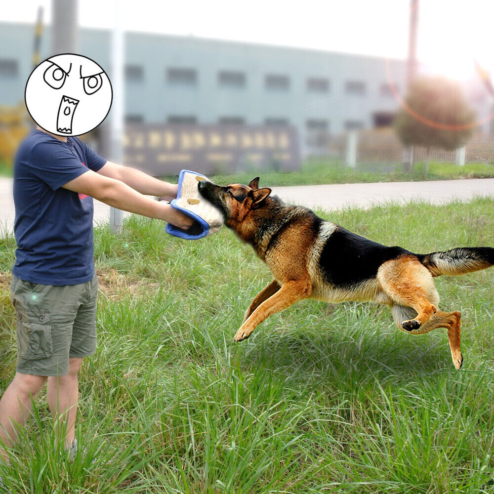 Jute Intermediate Dog Bite Pillow Training Builder K9 Police Dog German Shepherd