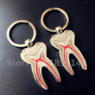10 X Teeth Keychain Dentist Decoration Keychain Tooth Model Dental Clinic Gift