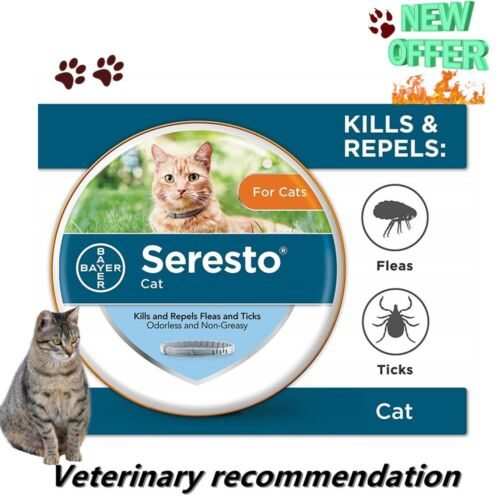 Bayer Seresto Flea and Tick Collar for Cats All Weight 8 Month Protection USA