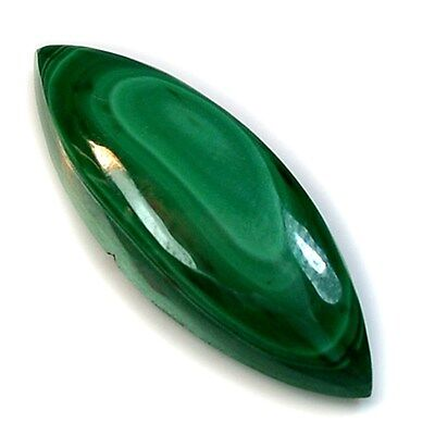 15Ct Natural Fine Malachite (28mm X 10mm) Cabochon