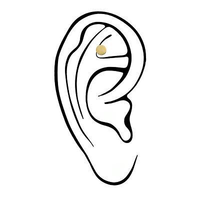 Nichtraucher Ohrmagnet Magnet im Ohr Rauchen aufhören Akupressur Akupunktur