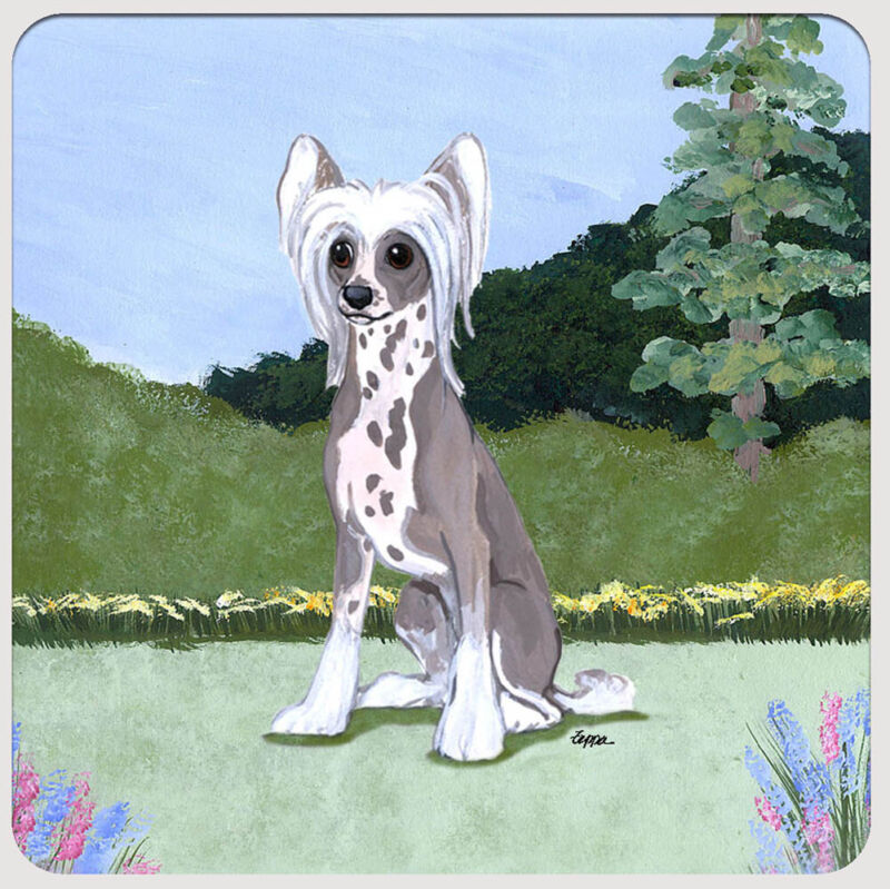 Chinese Crested Coasters - Set of 4