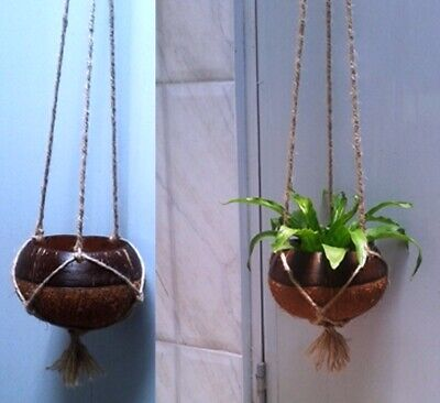 Coconut Shell Hanging Pots for Plants small plants Indoor-outdoor Free Shipping](Small Pots For Plants)