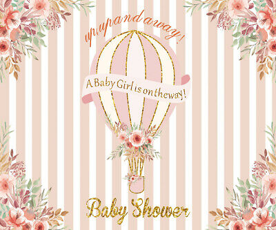 Baby Girl Shower Hot Air Balloon Flowers Photo Background Backdrop Studio Props](Baby Girl Background)