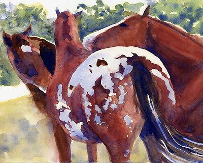 Giclee Print Horse Appaloosa Watercolor Art Painting gossip chestnut bay (Horses Giclee Print)