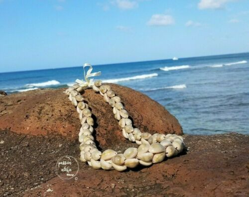 Hawaiian Lei Cowrie Necklace Sea Shell Jewelry Vintage Bead Tropical Natural NEW