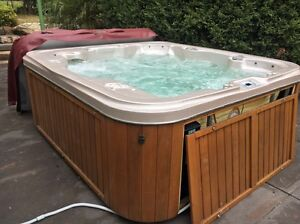 Portable Spa - Free Delivery Greenwith Tea Tree Gully Area Preview