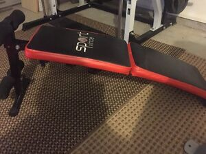 Incline bench Willmot Blacktown Area Preview