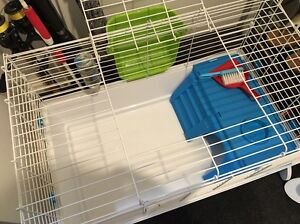 Almost brand New Guinea Pig Cage Adelaide CBD Adelaide City Preview