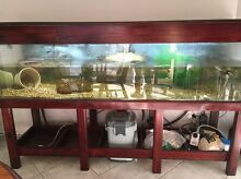 6ft fish tank Prestons Liverpool Area Preview